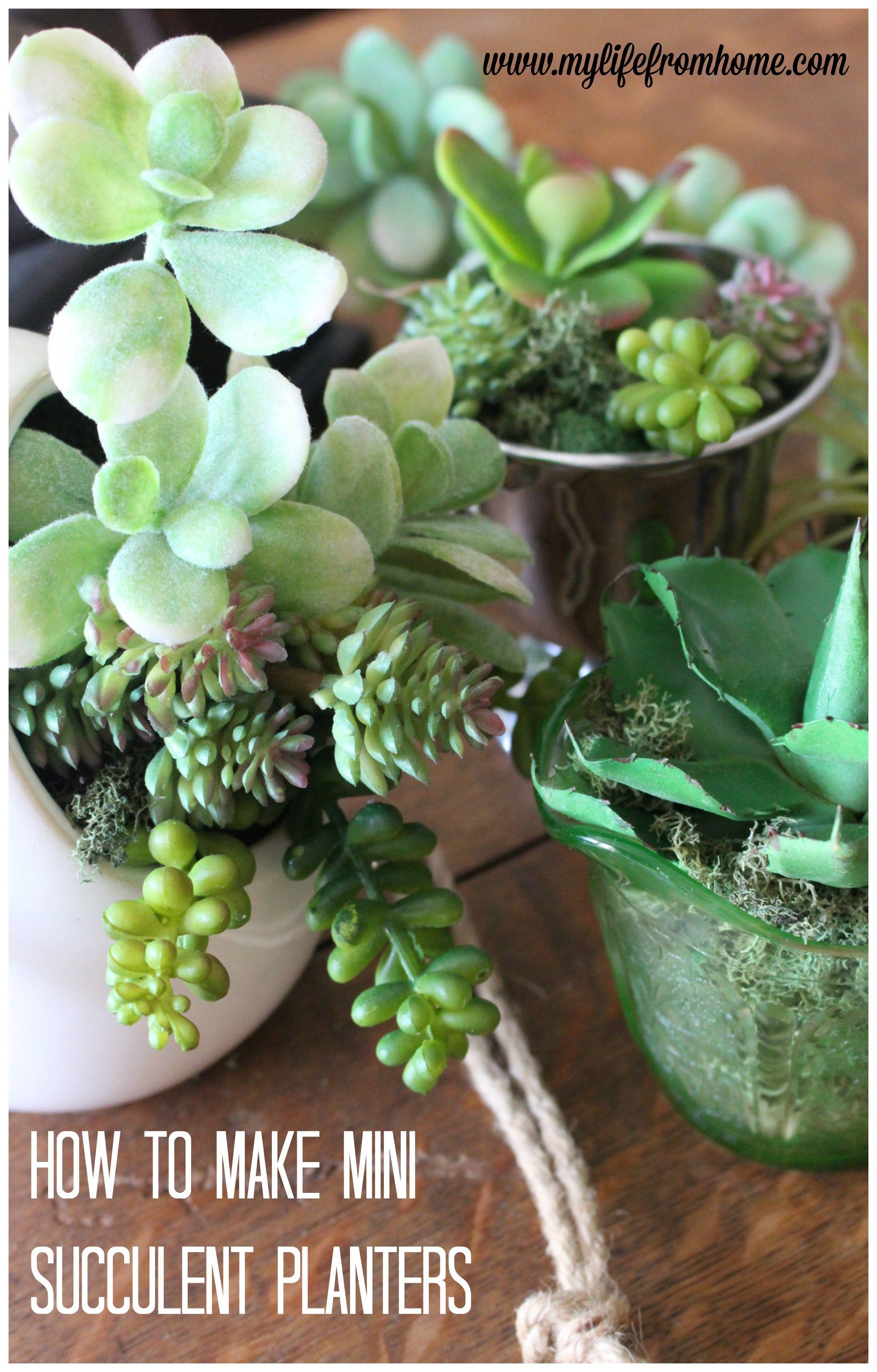 how to make- mini- succulent- arrangements- home decor- gardens ...