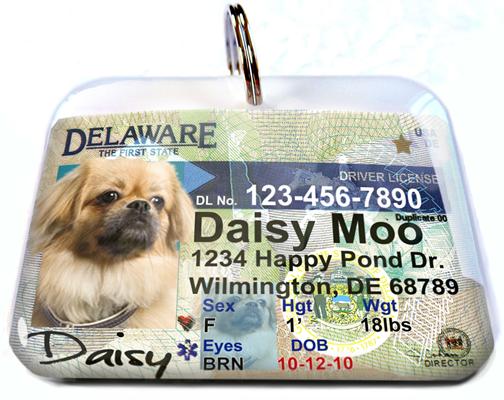 Delaware Driver License Id Tag Id Tag Pet Id Tags Pet Tags