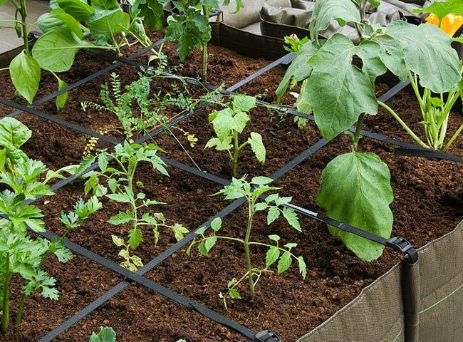 """Cultiver ses légumes en villes : certainement, avec un balcon potager sur-mesure ! """"Tous jardiniers"""" grâce à Rustica."""