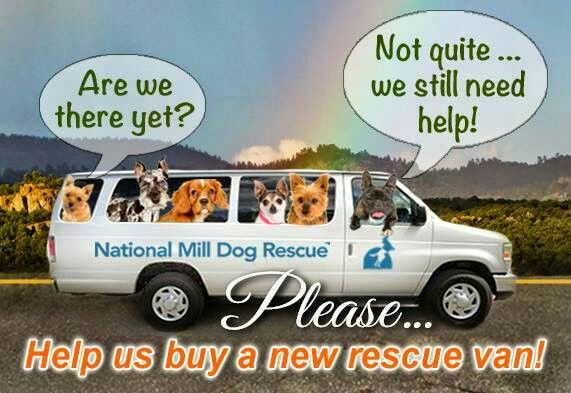 WE'RE ALMOST THERE ... just a little farther to go! We have rescued more than 8900 dogs from puppy mills and MANY MORE are waiting for us to save them. Help is needed so we can purchase a new rescue vehicle. Click here for more info: https://www.youcaring.com/rescue-van-fundraiser  Thanks to a generous donor, your donation will be matched 100%!