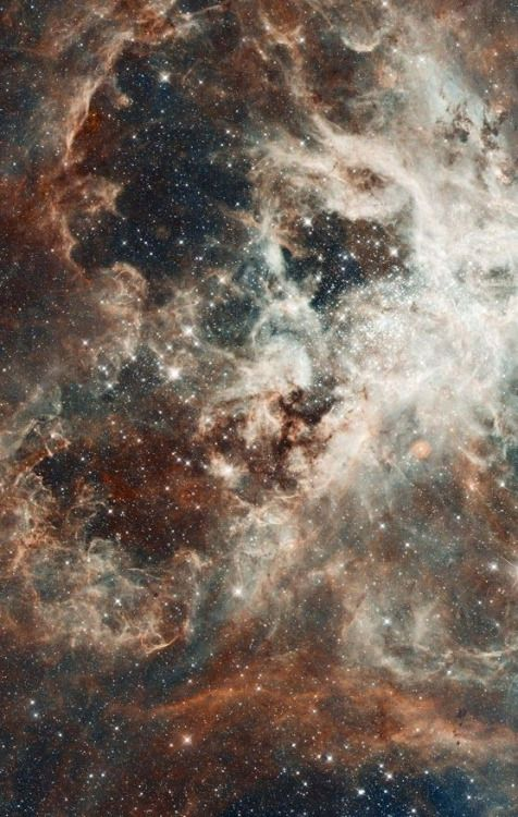 Pin By Christine Burgos On Outer Space Hubble Space Telescope Hubble Space Astronomy