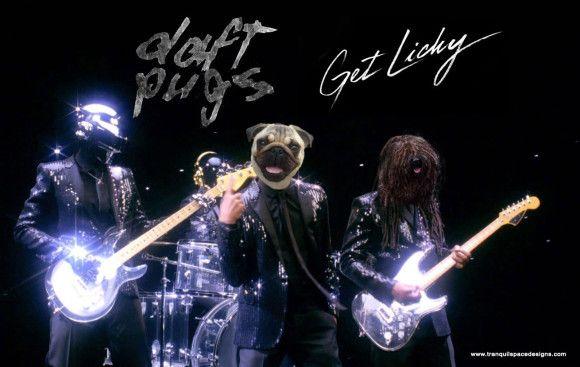 Daft Pugs love the band already lol XD :D