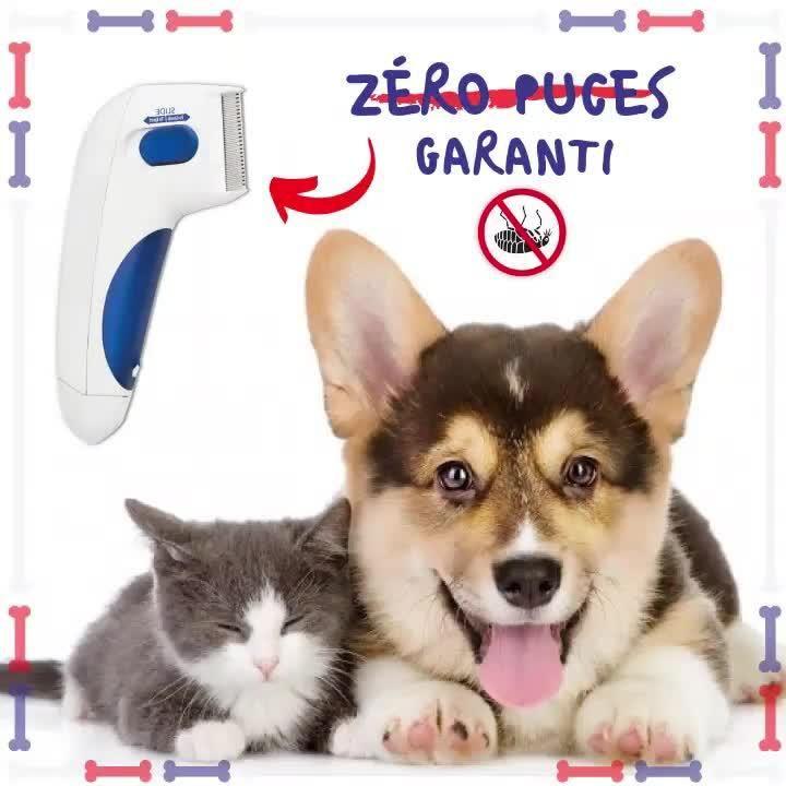 Ce peigne à puces électrique tue et assomme rapidement les puces sans blesser votre animal de compagnie.