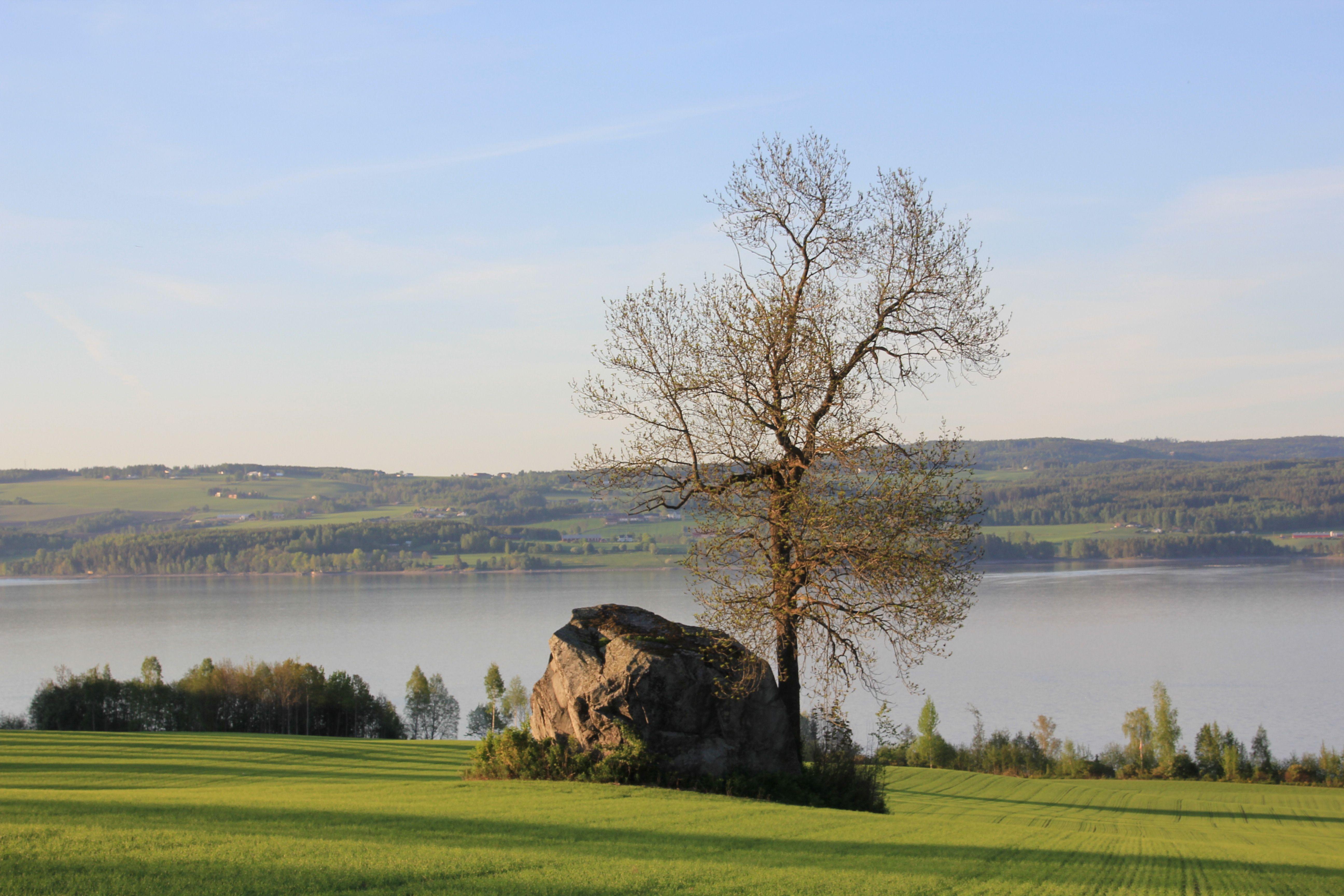 Østre Toten, Oppland, Norway - Google Search.  Giant stone on a field at Nordlia, Østre Toten, Oppland, Norway. Lake Mjøsa in the background. Kampesteinen ved Nordlia på Østre Toten: photo by Øyvind ...