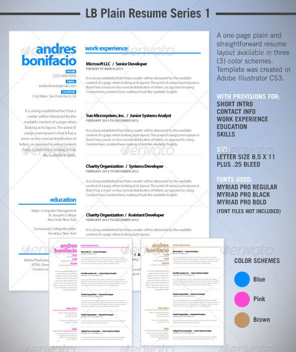 LB Plain Resume Series 1 Bold fonts, Simple resume template and - resume template with picture insert