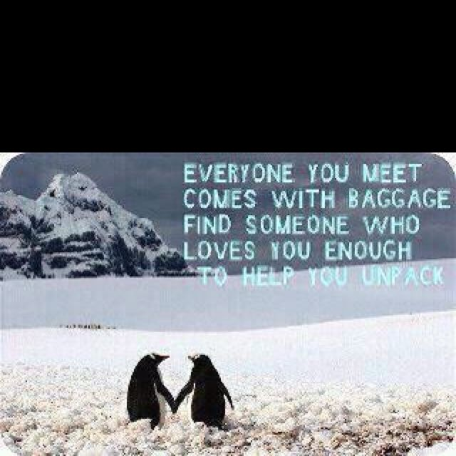 Penguin Love Quotes Enchanting Like The Quote LOVE The Penguins Words To Live By Pinterest