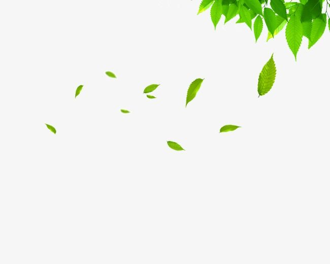 Floating Leaves Leaf Clipart Spring Green Leaves Png And Vector With Transparent Background For Free Download Leaf Clipart Background For Powerpoint Presentation Watercolor Wallpaper