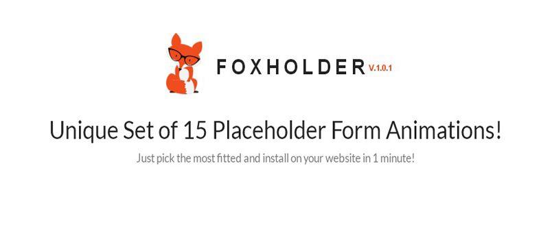 Unique Placeholder Form Animations