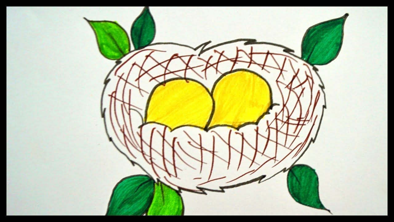 How To Draw A Nest Drawing Bird Nest Drawing For Kids Bird Drawings Drawing For Kids Drawings