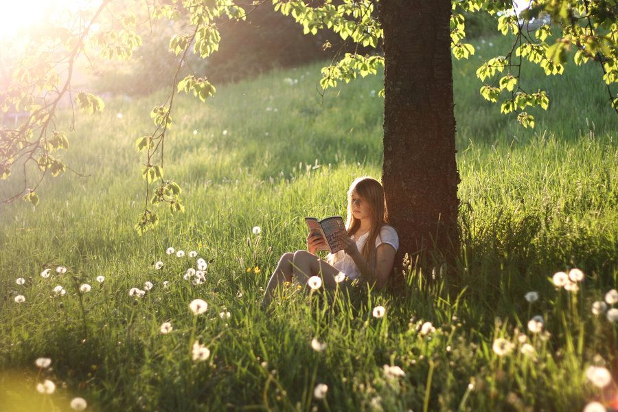 In the perfect meadow, with the perfect book.