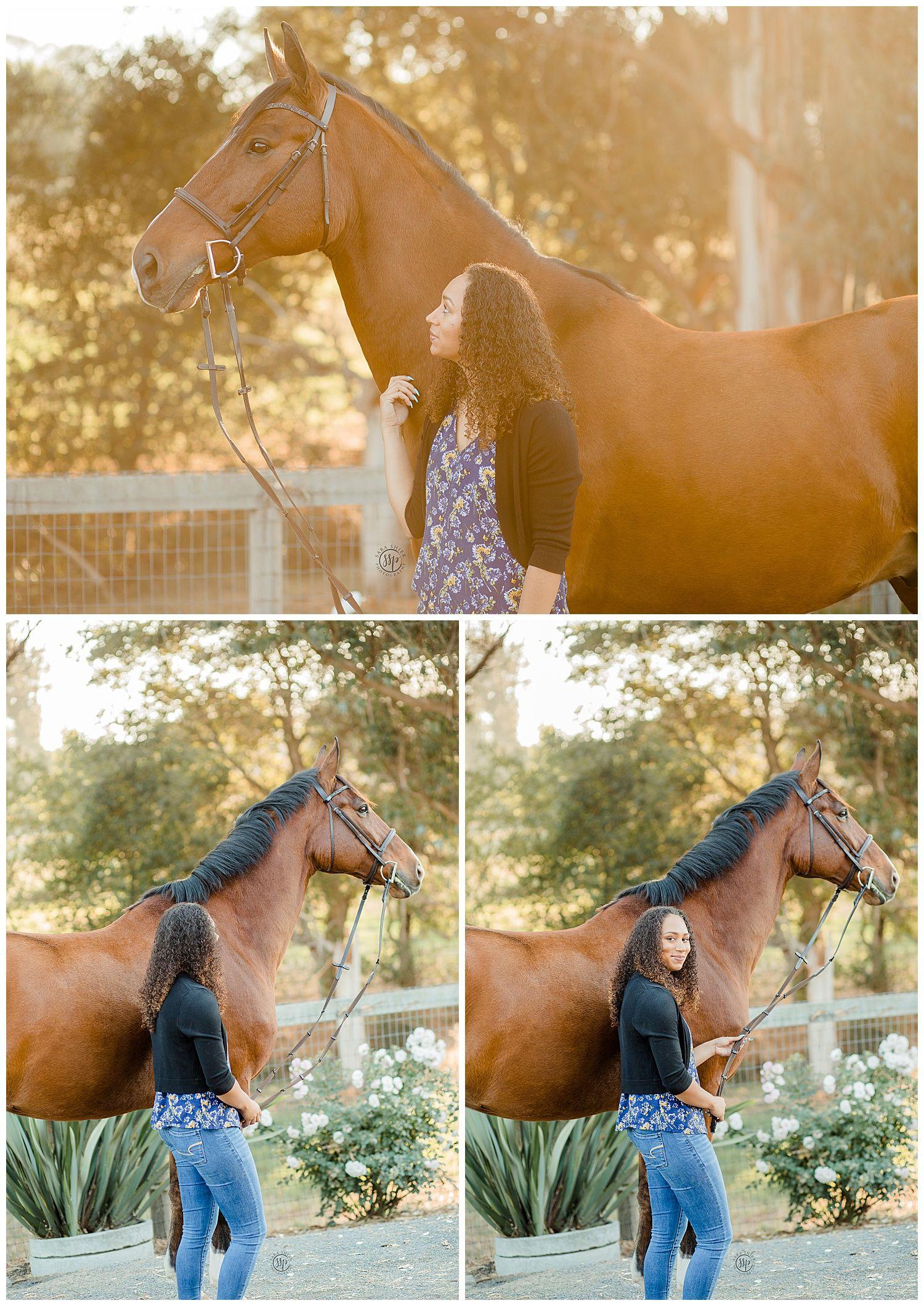 Black Background Horse Rider Equine Photographer Southern California Sara Shier Photography Socal Eques Horse Photoshoot Ideas Equine Photographer Horse Photos
