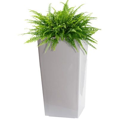 Found it at Wayfair - Modena Square Planter Box