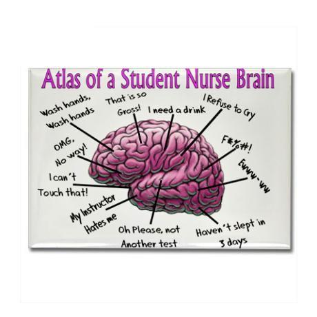 Student Nurse Brain...lol! For real! @Cori DiGiacomo @Christian Wilsson Coker @Josie White