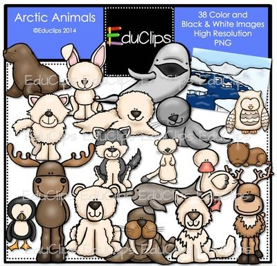 Arctic Animals Clip Art Bundle Educlips Animales Dibujos