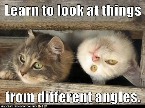 YouTube Cat Videos (@youtubecats) | Twitter