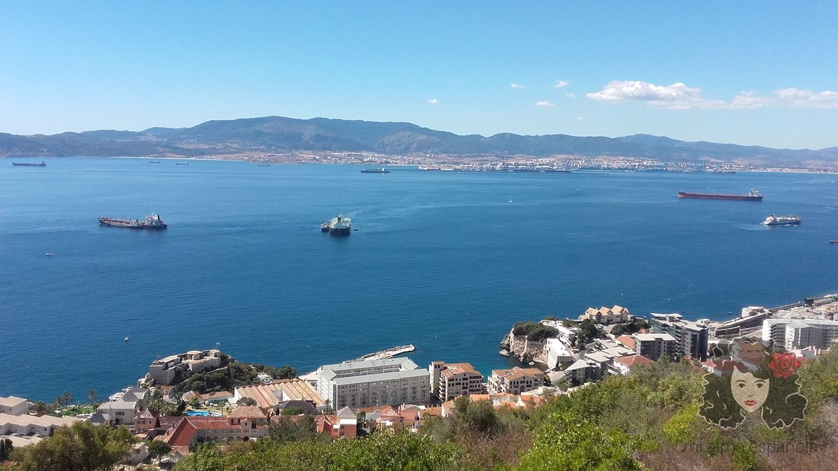 gibview6