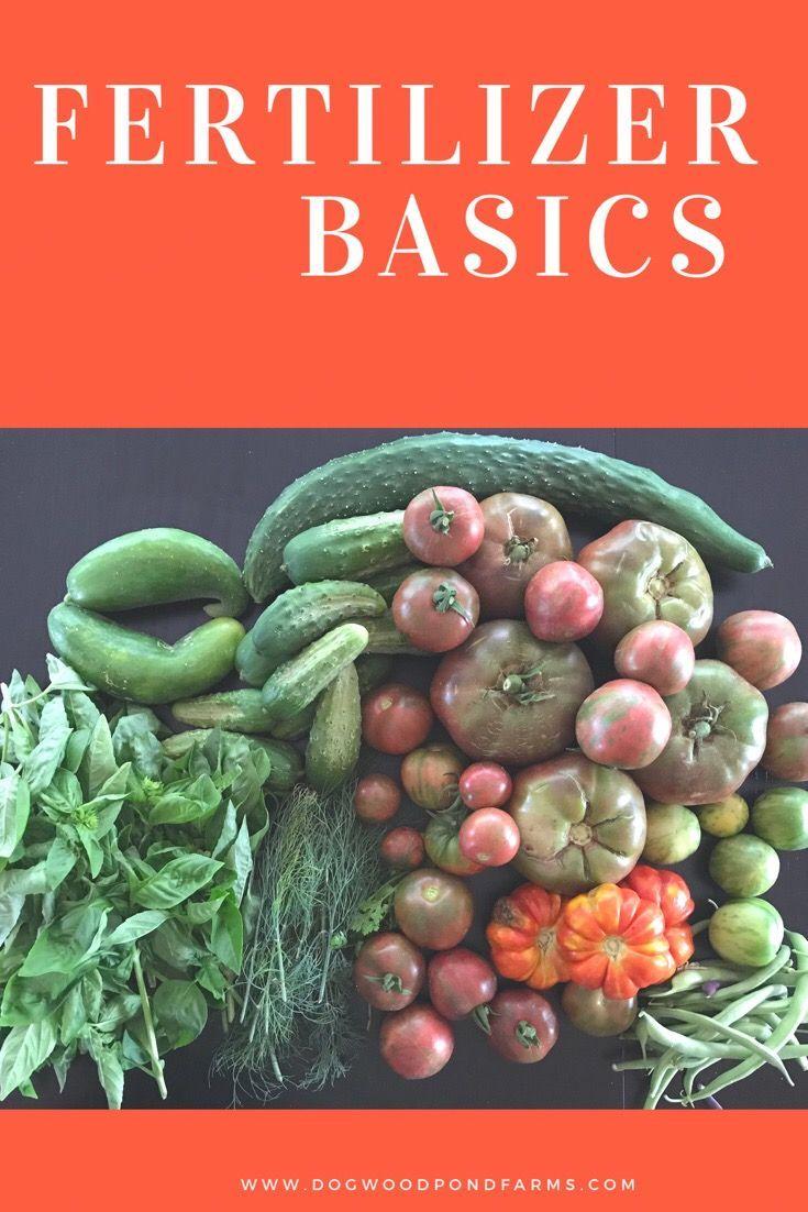 Fertilizer For The Vegetable Garden Organic Gardening 640 x 480