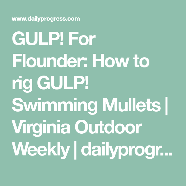 GULP! For Flounder: How to rig GULP! Swimming Mullets | Virginia