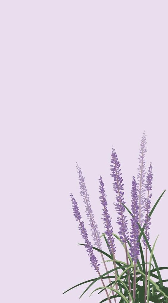 Download Great Aesthetic Background for iPhone 11 2020