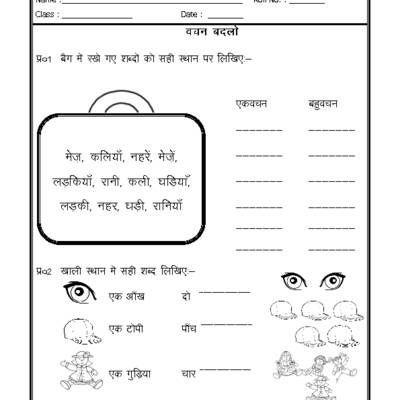 Hindi Worksheet - Singular Plural in Hindi | hindi worksheets ...