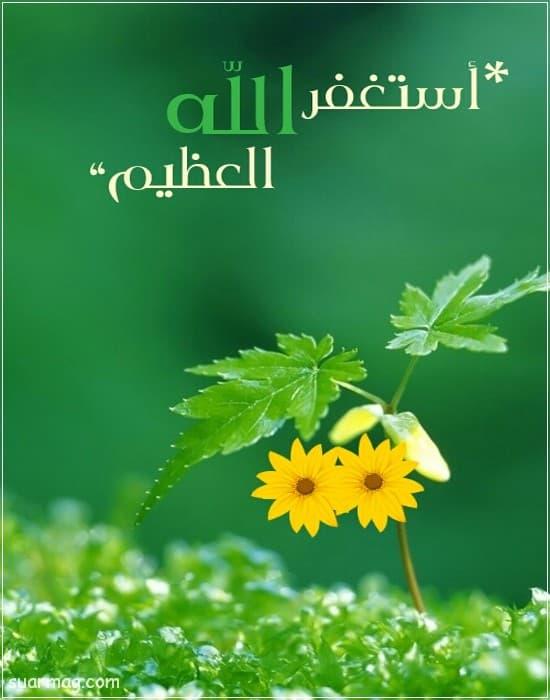 اجمل خلفيات واتس اب اسلاميه وصور دينية جديدة للواتس Islamic Images Herbs Islam
