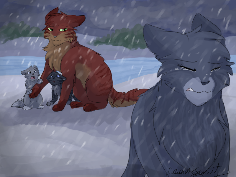 Warrior Cats Blossomkit Well I haven...