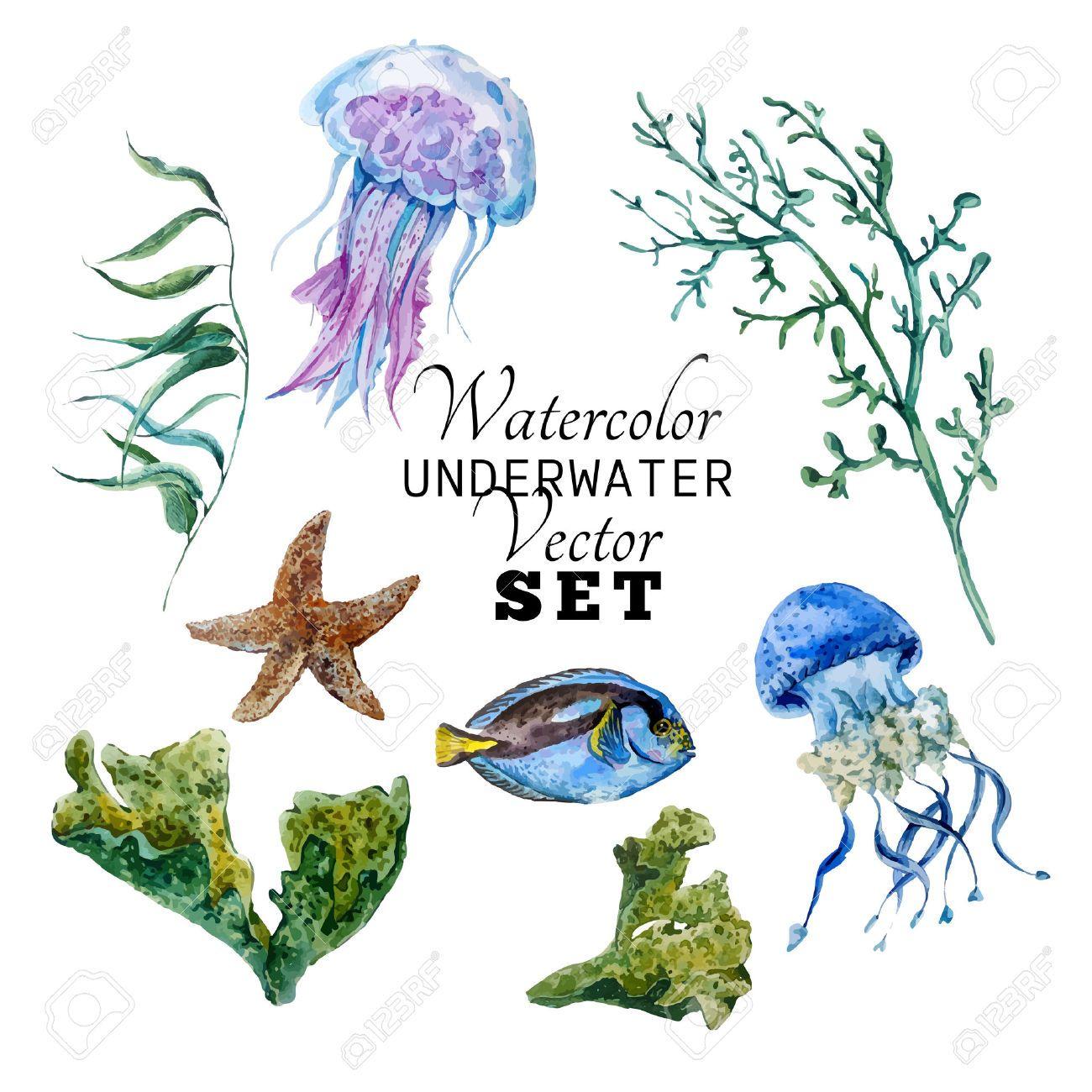 Resultado de imagen para acuarelas animales marinos