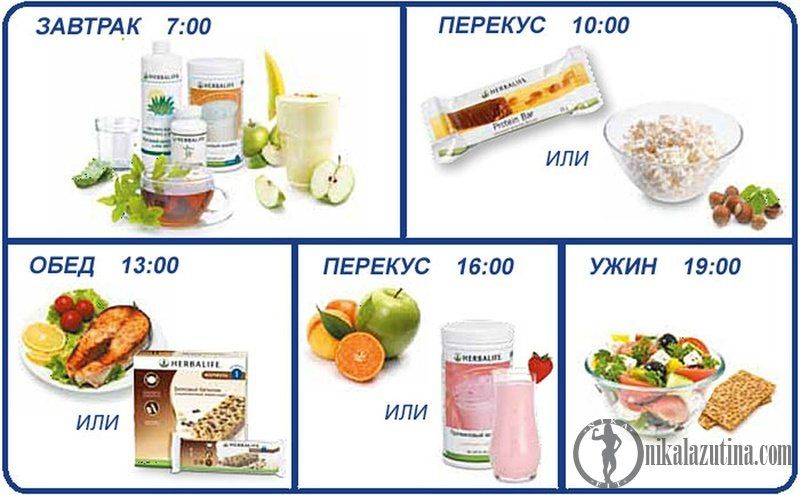 Правильное время питания чтобы похудеть