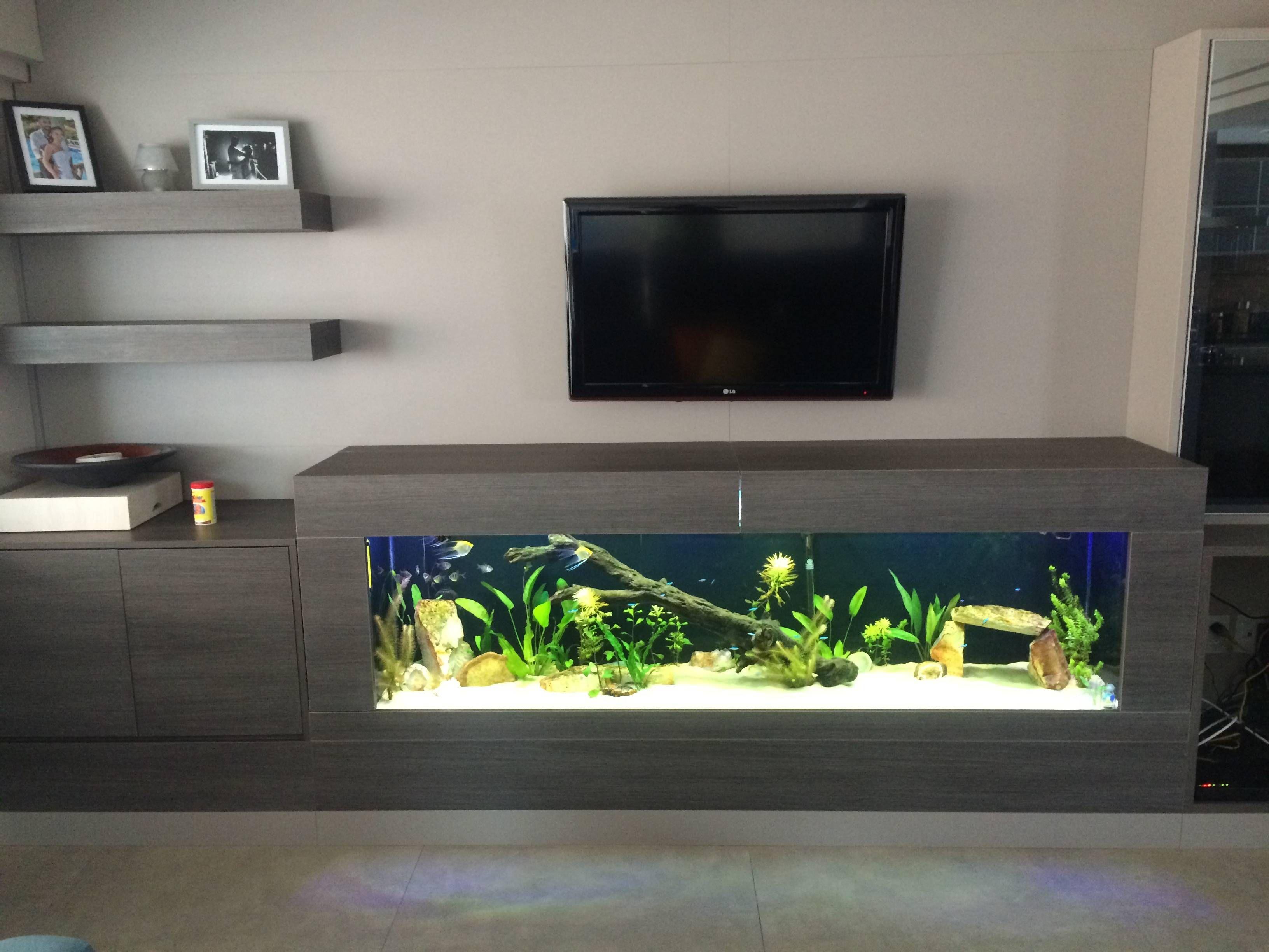 Clique aqui para ampliar a imagem aqu rio pinterest - Meuble tv aquarium ...
