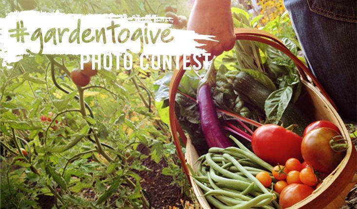 Show what you share garden supplies homegrown fruits