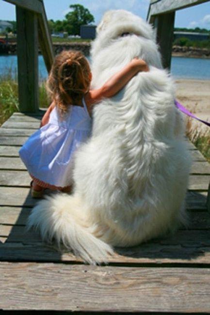Q fofo uma criança ser tão amiga de um cão!!