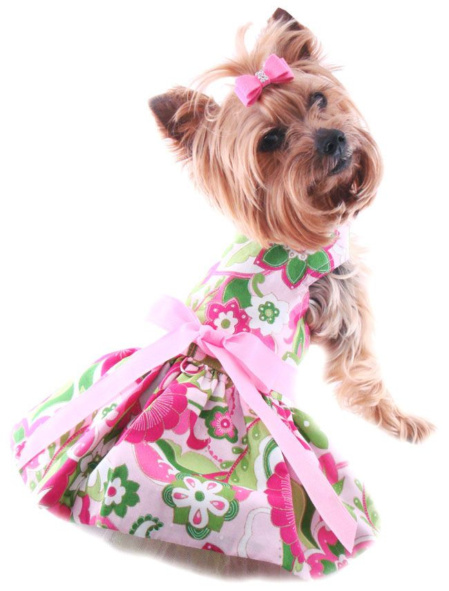 Small Dog Dress Harness Dress For Dogs Soft Harness Pet