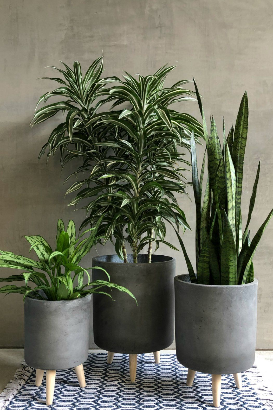 Charcoal Fiber Clay Cylinder Planter With Wood Legs Planter Pots Indoor Clay Planters Potted Plants Outdoor