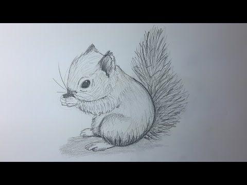 Como Dibujar Un Caballo Como Hacer Un Dibujo Para Principiantes - Dibujos-a-lapiz-para-principiantes