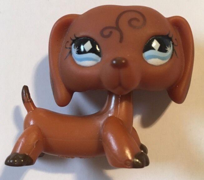 Littlest Pet Shop LPS 640 Dachshund Brown Dog Swirls Blue Diamond Eyes RARE    eBay. Littlest Pet Shop LPS 640 Dachshund Brown Dog Swirls Blue Diamond
