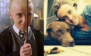 Tom Felton - Harry Potter
