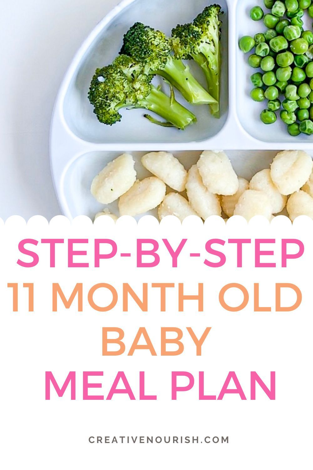 11 Month Old Meal Plan - Nutritionist Approved | Creative ...
