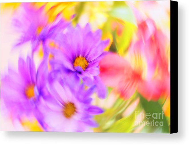 Spin Me Around Baby Canvas Print by Anna Sheradon.  All canvas prints are professionally printed, assembled, and shipped within 3 - 4 business days and delivered ready-to-hang on your wall. Choose from multiple print sizes, border colors, and canvas materials.