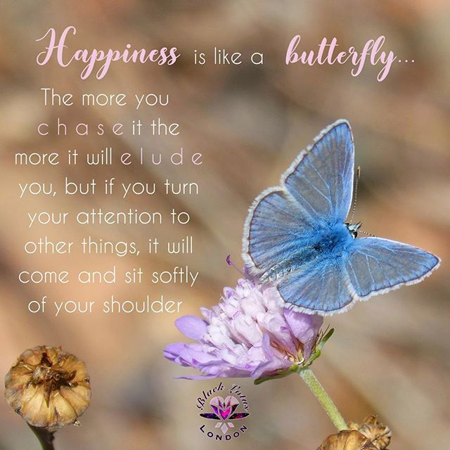Happiness Is Like A Butterfly Inspirationalquotes Inspiring