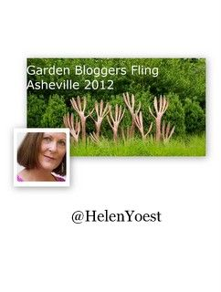 April 16,2012 with @HelenYoest sharing information about #FLING2012 / Garden Blogger Event in Asheville - Transcript #gardenchat