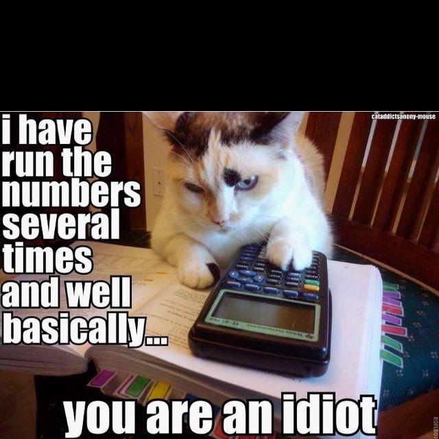 07ccbeb167b84adb29fe9a81bd519298 tax cat funny pinterest humor