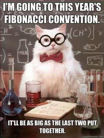 Fibonacci joke. I love Fibonacci, enough to own a shirt on it.   Nerdy jokes,  Nerd jokes, Nerd humor
