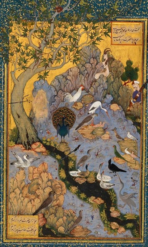 Scene from The #Conference of the #Birds in a #Persian miniature. The #hoopoe, center right, instructs the other birds on the #Sufi path. #Islam #Iran