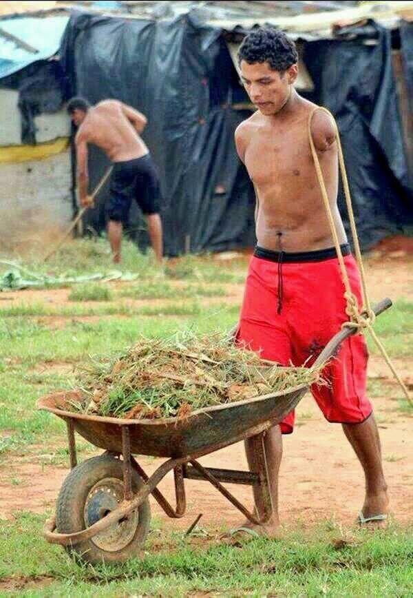 El trabaja todos los días para alimentar a sus padres.