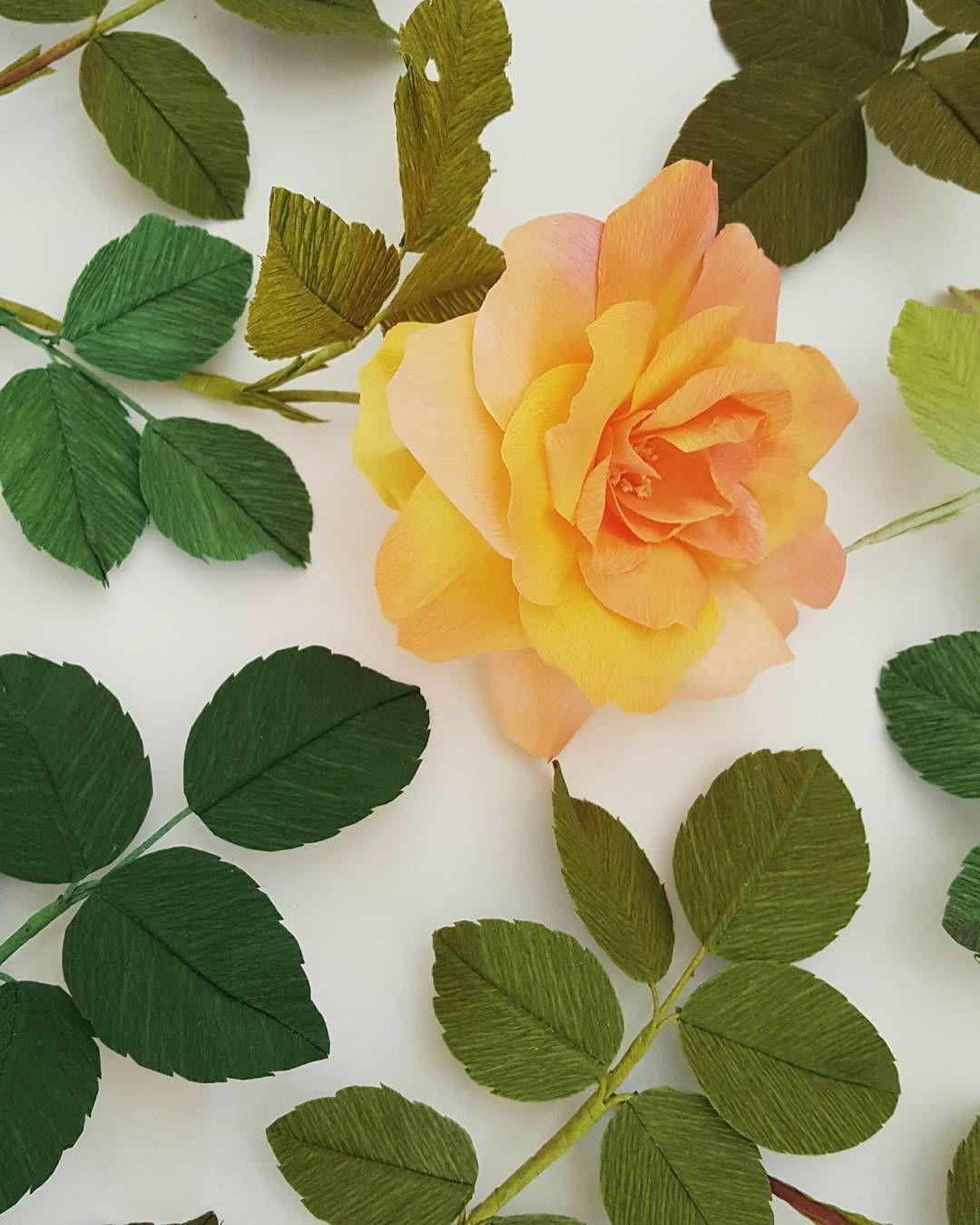 Crepe paper josephus coat rose in progress by lynn dolan flores