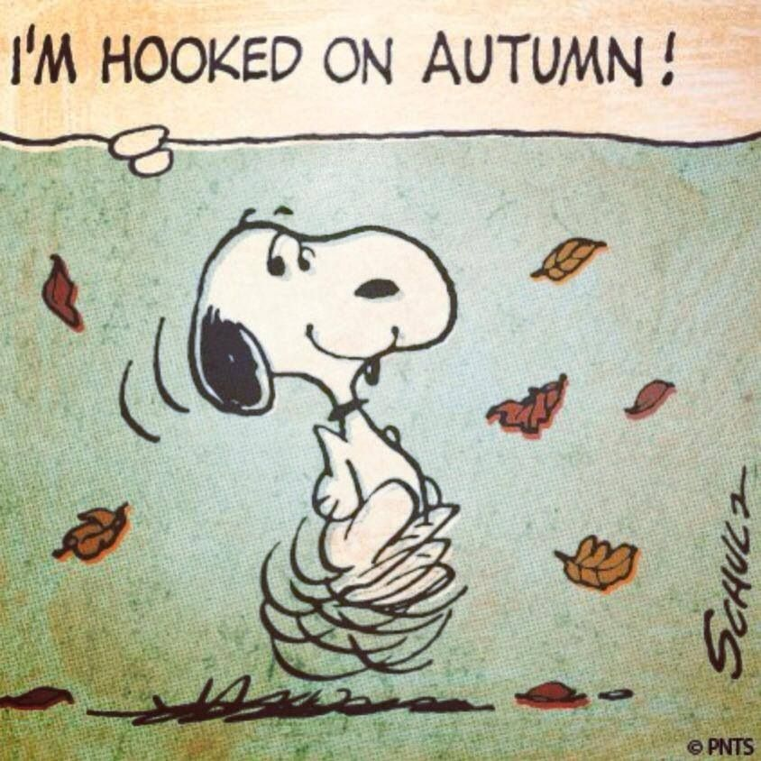 Dancing in the leaves of Autumn.