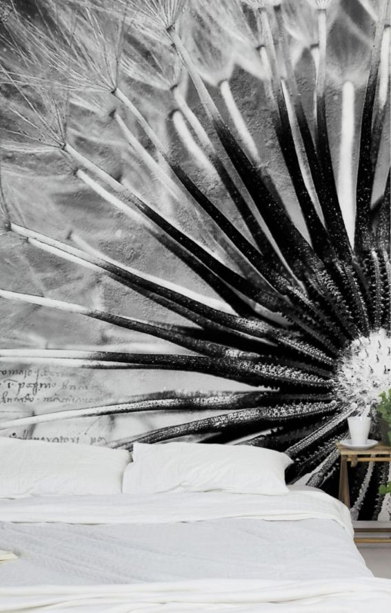 Bilderwelten Vliestapete Blumen Quadrat »Pusteblume Schwarz  Weiß