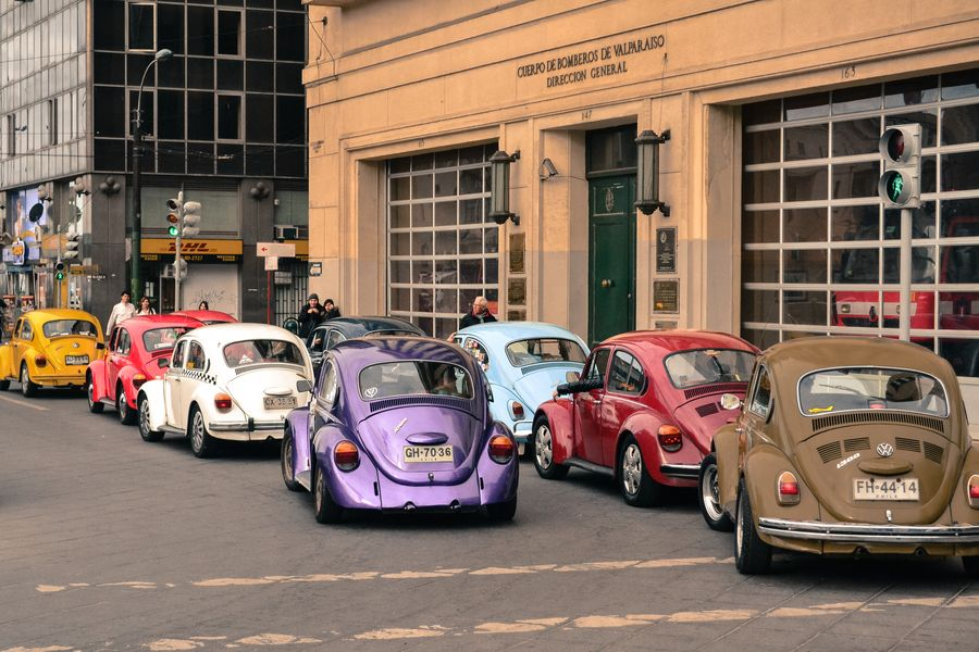 Bugs on Parade...