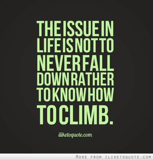 The Issue In Life Is Not To Never Fall Down Rather To Know How To Climb Words Life Never Stop Learning