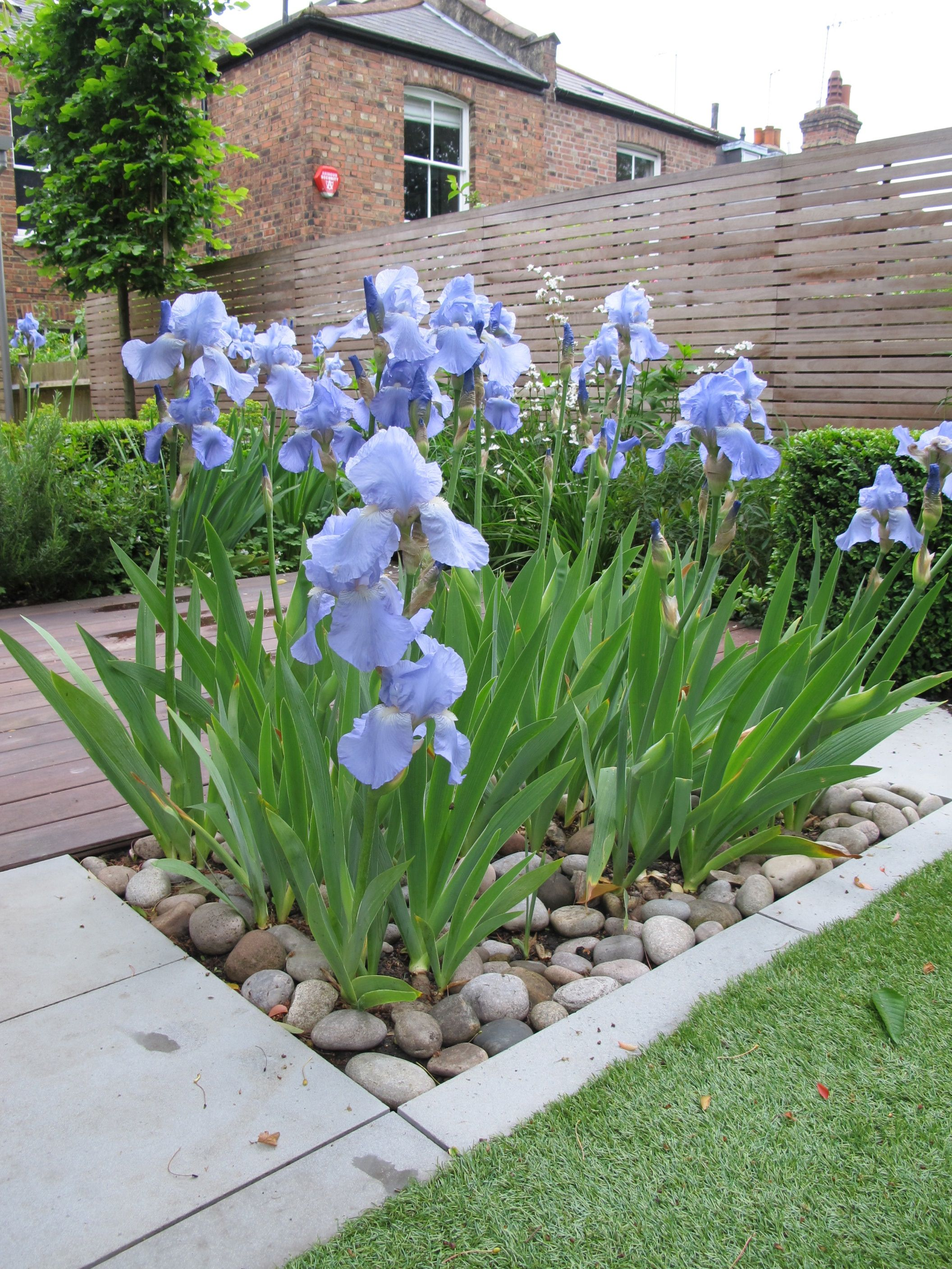 Wood Flower Beds In Front Of House
